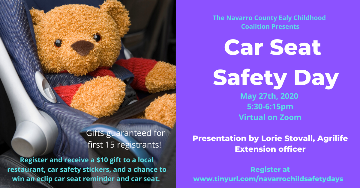 Car Seat Safety Day