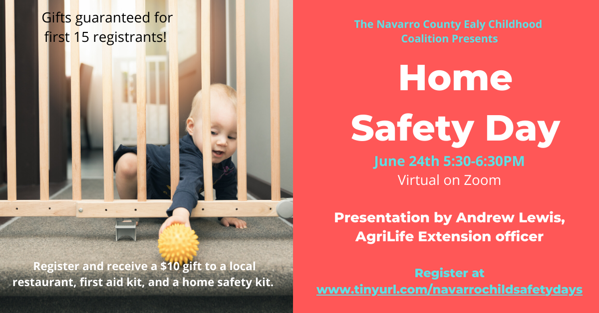 Home Safety Day